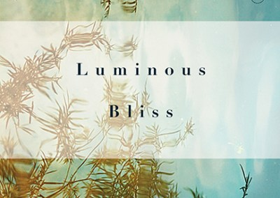Luminous Bliss by Traleg Kyabgon