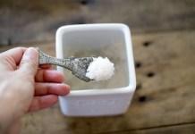 塩は全ての基礎