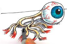 Eyeballsml