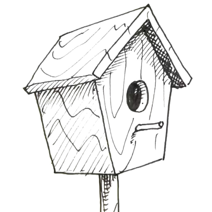 how to draw a bird box   Shoo Rayner