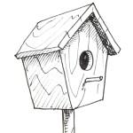 Draw--bird-Box-small