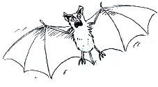 Draw A Vampire Bat Shoo Rayner Author