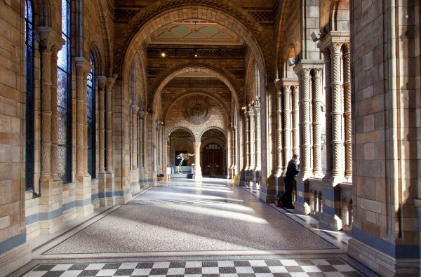 Natural History Museum London Sw7 - Venue & Event Space