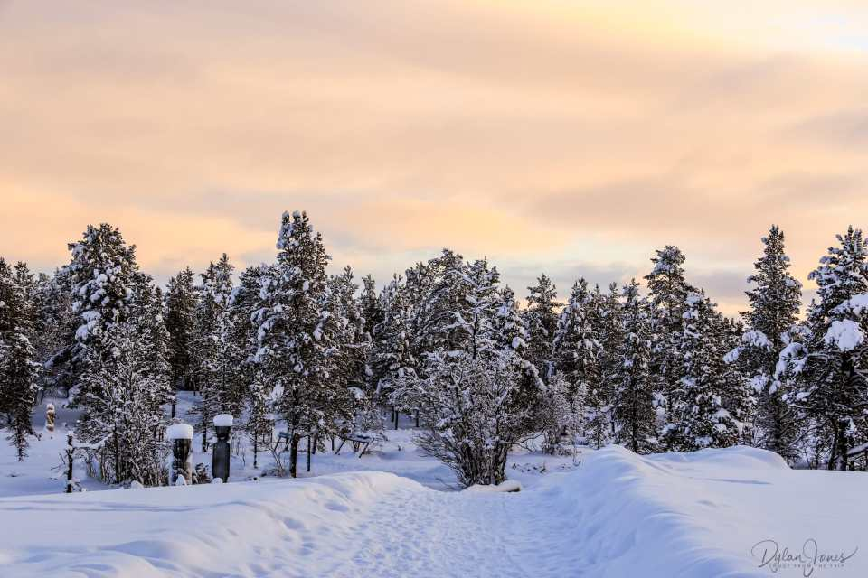 The pathway from the Igloo Village at Kakslauttanen East Village