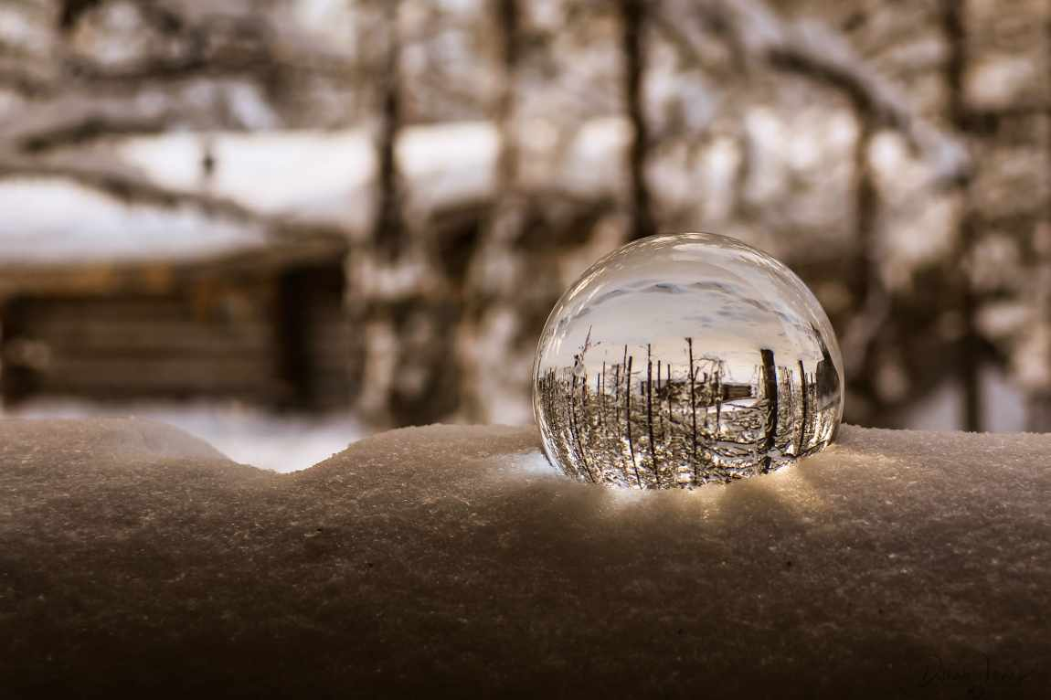 Reflections of the woodland cabins in a lens ball