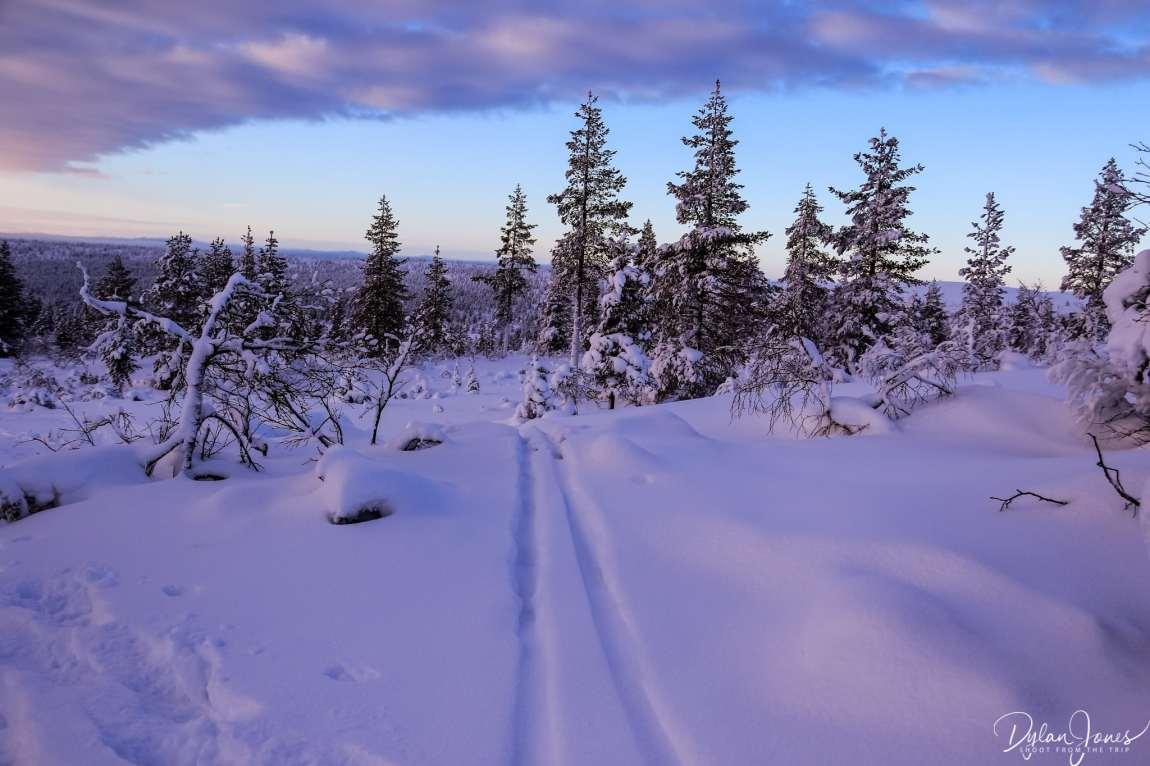 Cross country skiing tracks on the Kiilopää Fell, Saariselkä Lapland