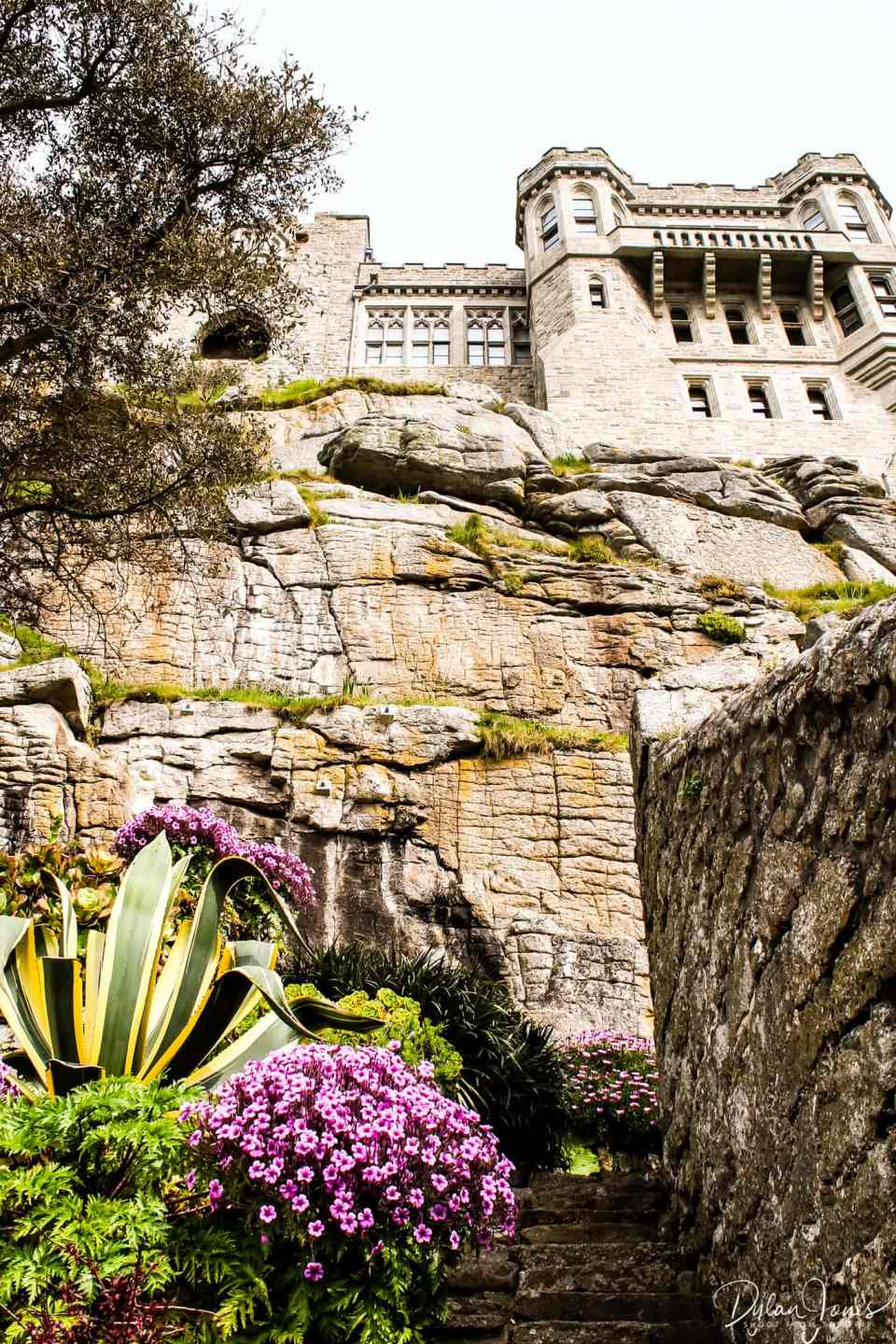 Looking up towards the castle from the terraced gardens of St. Michael's Mount, South Cornwall coast