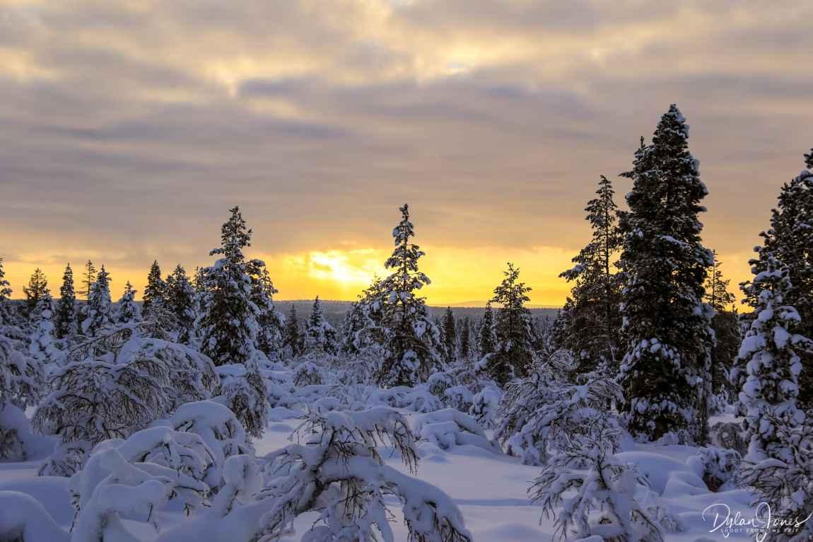 Stunning sunset at the Kiilopää fell