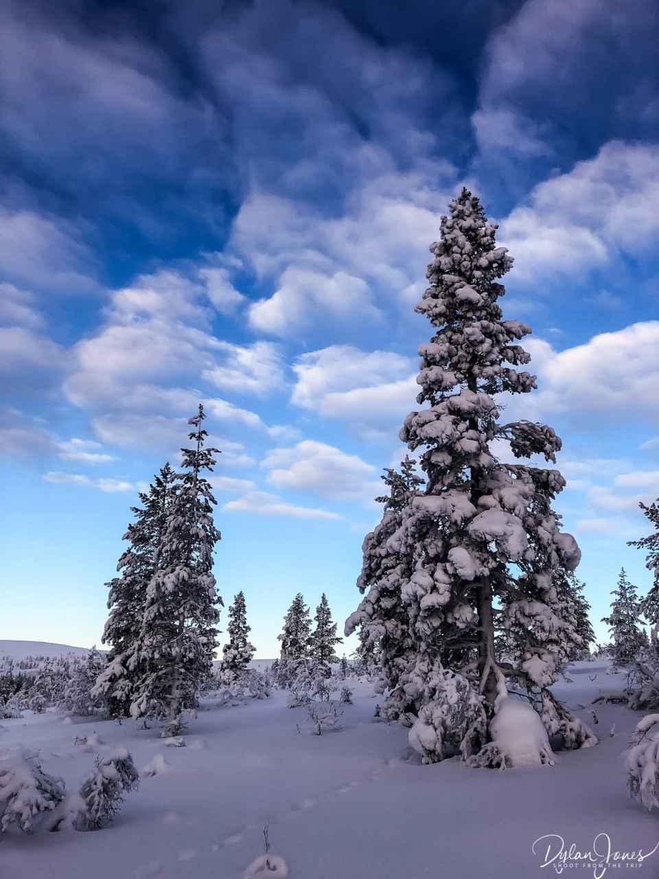 Beautiful Lapland winter scenery at the Kiilopää fell
