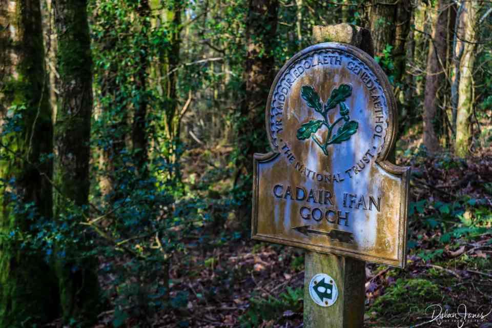 The Cadair Ifan Goch walking route