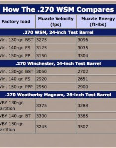 wsm ballistics chart winchesters mm short magnums shooting times also frodo fullring rh