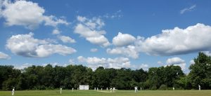 Cricket Game in New Jersey