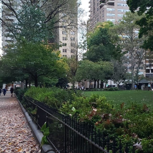 Fall season in Rittenhouse Square