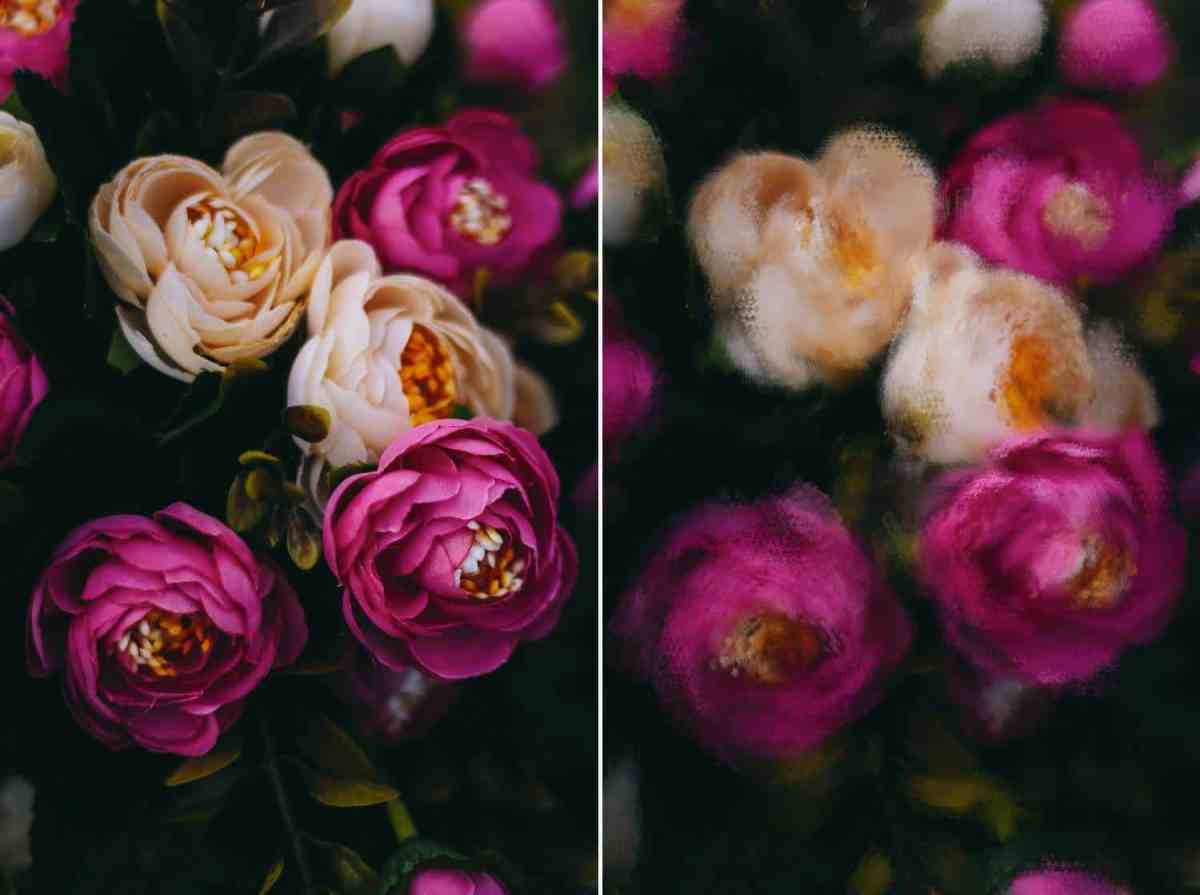 A dim, moody, close-up photograph of pink and peach roses is depicted twice: once in an unedited version, and once with a Photoshop brush applied to make the image look like a painting.