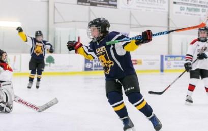 How to Achieve Team Chemistry in Hockey