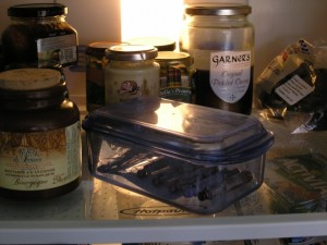 Some pickled onions. And some insulin in Tim's fridge