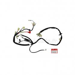 Fusible en verre 6x30 12V10A DAX/Monkey/PBR