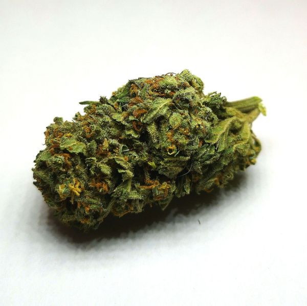 jamaican-dream-cannabis-legale