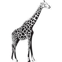 Giraffe StAnding African Wild Animals Wall Stickers Home ...