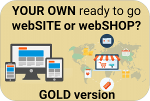 Website or Webshop – Ready to use including Hosting 12 months (GOLD)