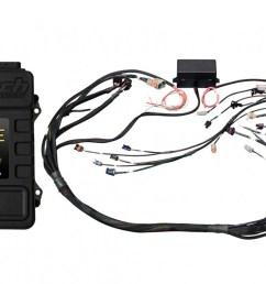 elite 2000 gm gen iv lsx ls2 ls3 etc non dbw terminated harness [ 1200 x 800 Pixel ]