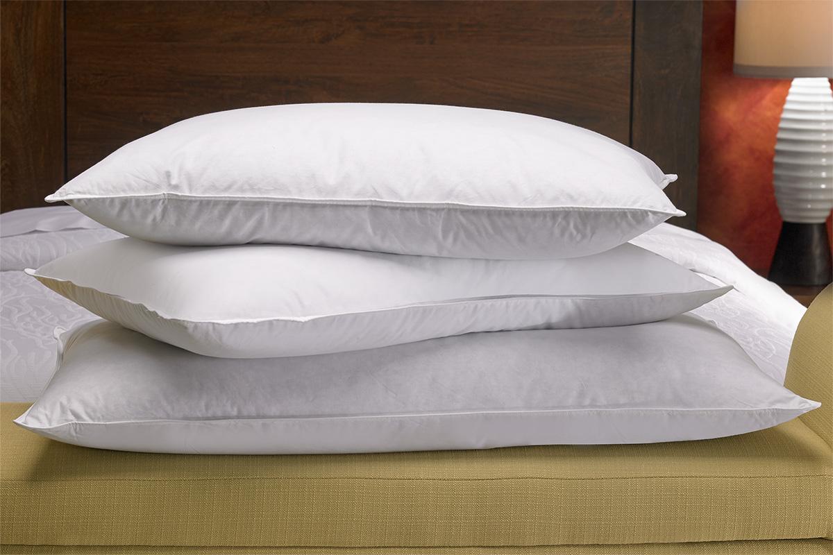 Feather  Down Pillow  Shop Hilton Garden Inn