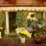 Shop Insurance Flower Florist Compare quotes buy policy professional general liability