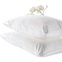 Brookstone Standard Better Than Down Pillows 2 Pk ...