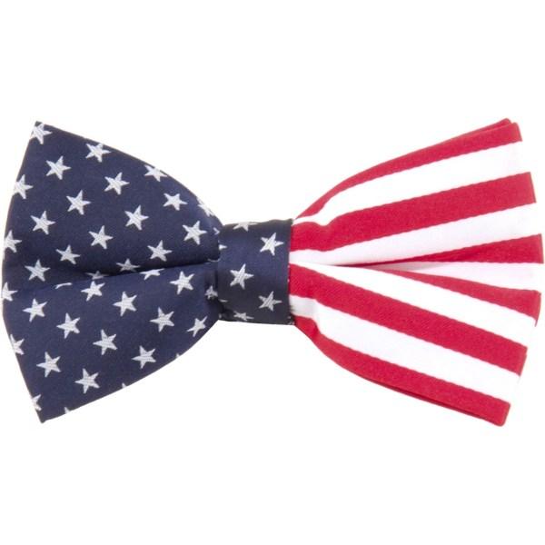 Eagles Wings American Flag Bow Tie Ties Apparel