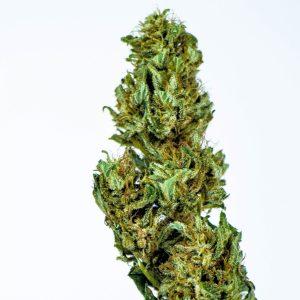 Natural Life - dopemary Hemp CBD Flower Elecktra
