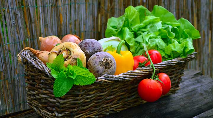 8 Best websites to buy fresh vegetables and fruits online