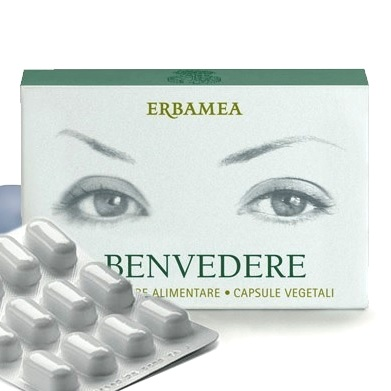 Benvedere Erbamea
