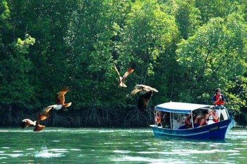 Image result for Langkawi – For Adventure Lovers