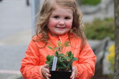plant sale1
