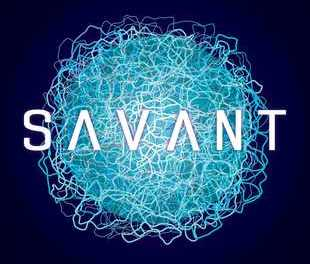 Savant by Nik Abnett