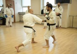 Muscles, stretching, trauma | Shorinji Kempo Moscow