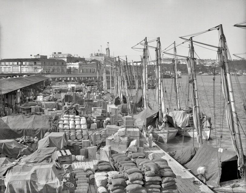 Cuban Cargo 1904  Shorpy  Historical Photos