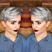 short silver colored hair