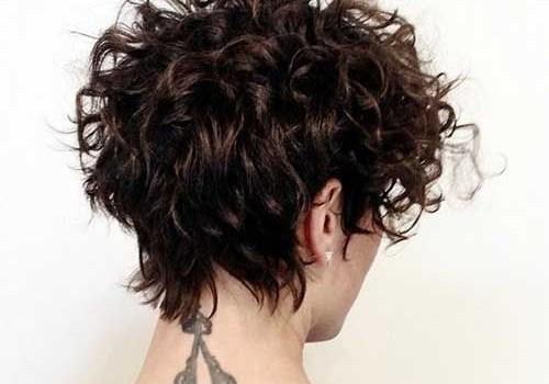 Short Curly Hairstyles 2017 - short curly hairstyles 2017 1