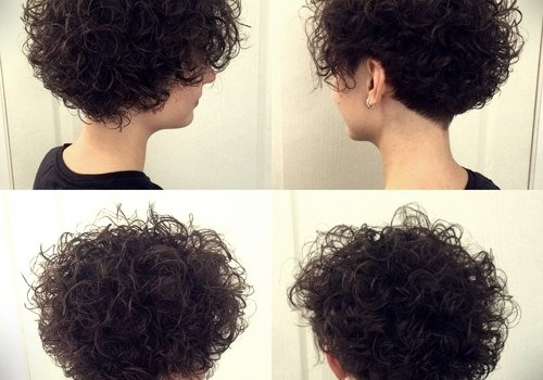 35+ Best Hairdos for Curly Hair - hairdos for curly hair 22