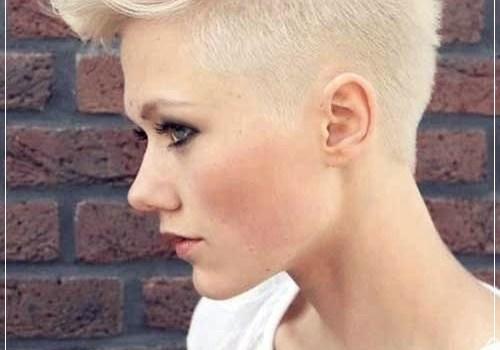 Short Haircuts for Fine Hair Will Dramatically Change Your Apperance - short haircuts for fine hair 17