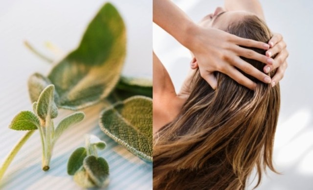 Sage for Hair Care