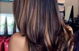 Home - long hair color 1