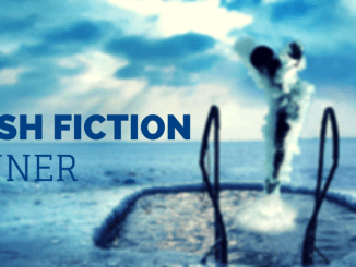 friday-flash-fiction-contest-the-diver-winner