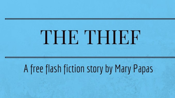 the-thief-a-free-flash-fiction-story-by-mary-papas