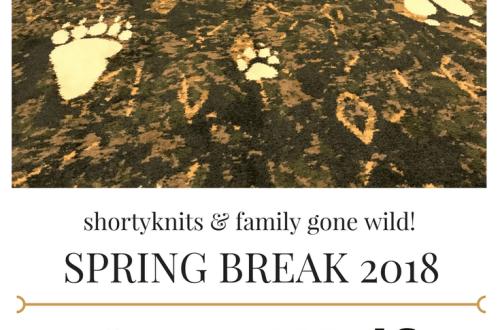 Spring Break Great Wolf Lodge