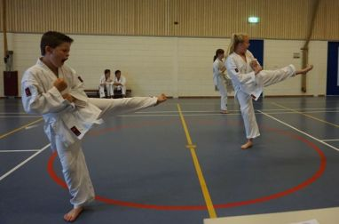 kyu test shotokan karate den haag