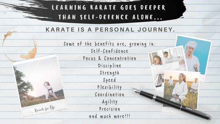 learn karate online