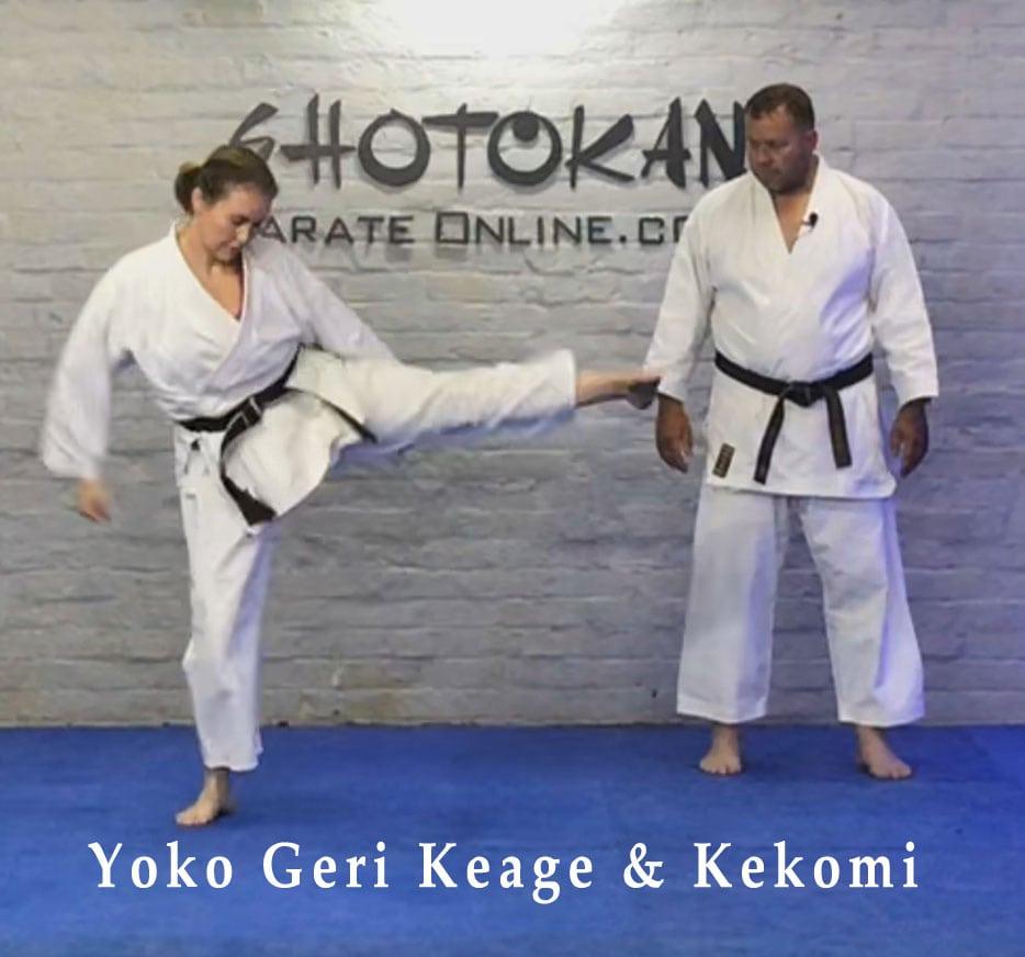 shotokan side kicks