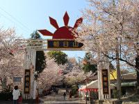 朝日山森林公園